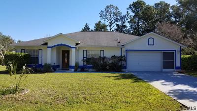 Palm Coast Single Family Home For Sale: 27 Ballenger Ln