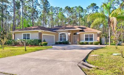 Palm Coast Single Family Home For Sale: 12 Ricardo Place