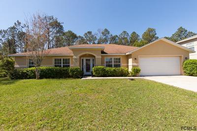 Palm Coast Single Family Home For Sale: 8 Kathleen Trail