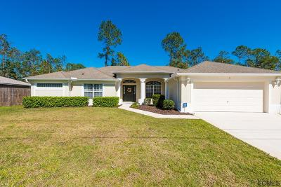 Palm Coast Single Family Home For Sale: 4 Zammer Court