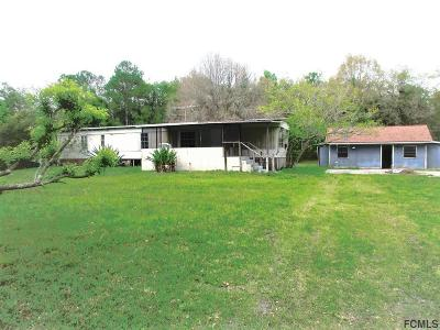 Bunnell Single Family Home For Sale: 6582 Hibiscus St