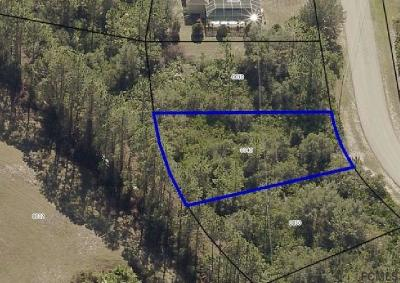 Matanzas Woods Residential Lots & Land For Sale: 71 Lee Drive