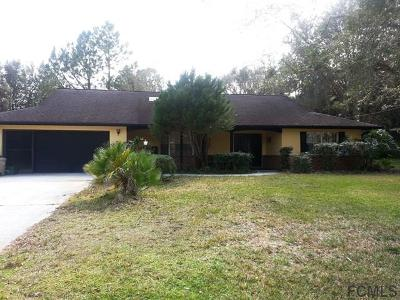 Palm Coast Single Family Home For Sale: 17 Panorama Drive