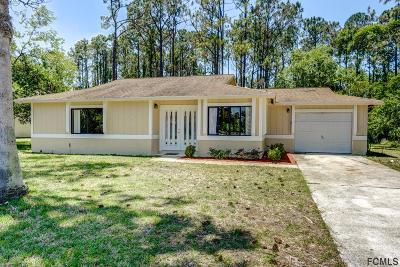Flagler County Single Family Home For Sale: 190 E Point Pleasant Drive