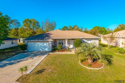 Flagler County Single Family Home For Sale: 30 White Hall Dr
