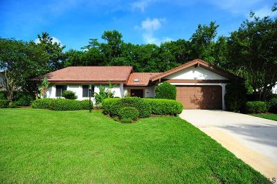 Flagler County Single Family Home For Sale: 41 Elder Drive