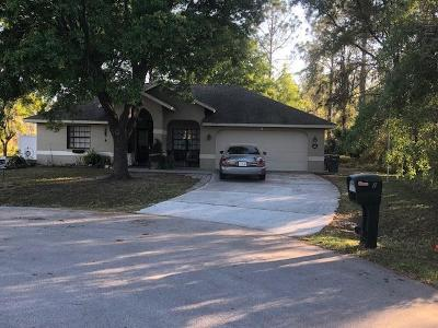 Palm Coast Single Family Home For Sale: 2 Westmar Place