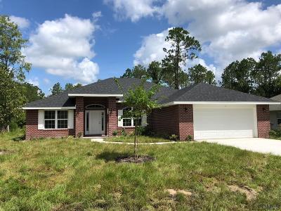 Palm Coast Single Family Home For Sale: 7 Kansas Path