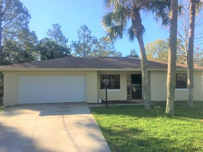 Palm Coast Single Family Home For Sale: 14 Pitt Lane
