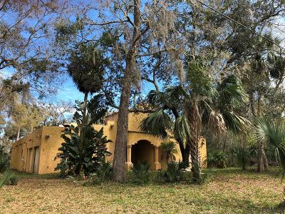 Flagler Beach Single Family Home For Sale: 21 Bulow Woods Circle