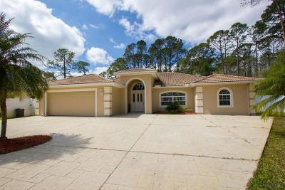 Palm Coast Single Family Home For Sale: 125 Ullian Trl