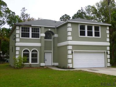Palm Coast Single Family Home For Sale: 29 Pope Lane