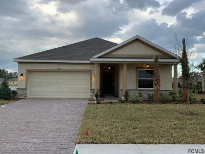 Palm Coast Single Family Home For Sale: 110 Park Place Circle