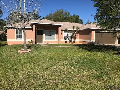 Palm Coast Single Family Home For Sale: 23 Luther Dr