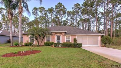 Palm Coast Single Family Home For Sale: 47 Ryarbor Drive