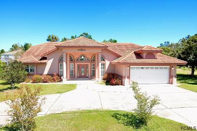 Palm Coast Single Family Home For Sale: 92 Laramie Drive
