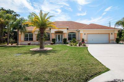 Palm Coast Single Family Home For Sale: 2 Cedardale Ct