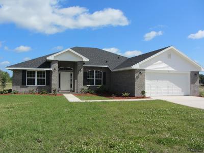 Flagler Beach Single Family Home For Sale: 28 Noah Blvd
