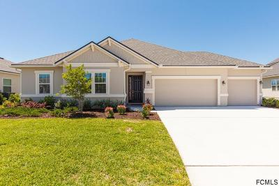 St Augustine Single Family Home For Sale: 55 Estero Ct
