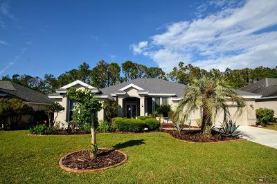 Ormond Beach Single Family Home For Sale: 36 Gale Ln