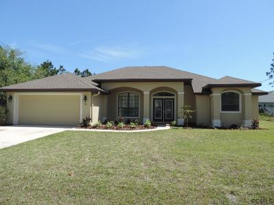 Palm Coast Single Family Home For Sale: 36 Lancaster Ln