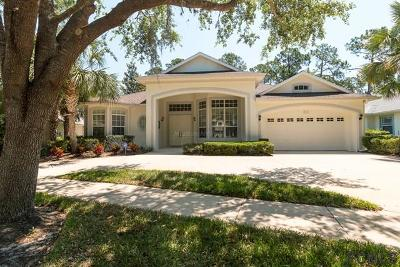 Palm Coast Single Family Home For Sale: 80 Osprey Cir