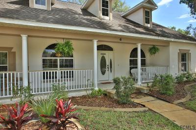 Flagler Beach Single Family Home For Sale: 6 Hickory Ln