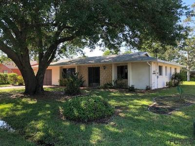 Palm Coast Single Family Home For Sale: 127 Berkshire Ln