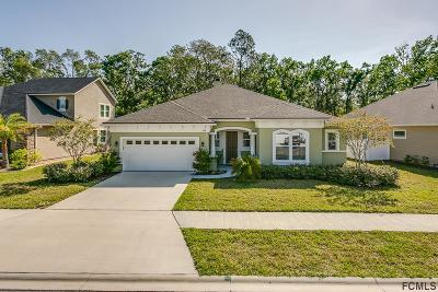 St Augustine Single Family Home For Sale: 664 Montiano Circle