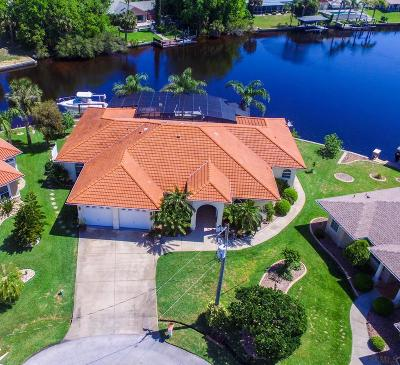 Palm Harbor Single Family Home For Sale: 39 Coconut Court