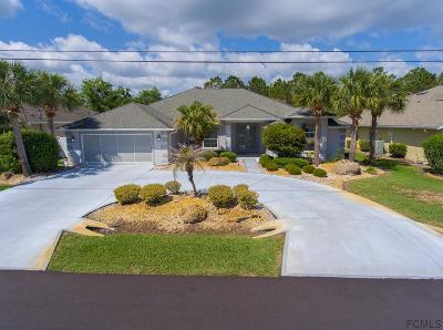 Matanzas Woods Single Family Home For Sale: 31 Lee Drive