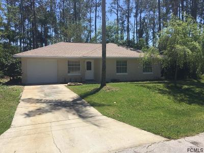 Palm Coast Single Family Home For Sale: 11 Reine Place
