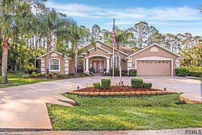 Palm Coast Single Family Home For Sale: 15 Elder Drive