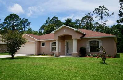 Palm Coast Single Family Home For Sale: 25 Riverdale Ln