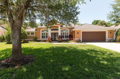 Ormond Beach Single Family Home For Sale: 20 Lakecliff Dr