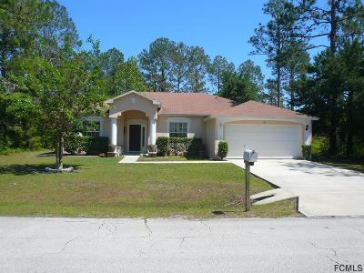 Palm Coast Single Family Home For Sale: 48 Randolph Dr