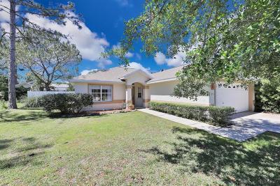 Palm Coast Single Family Home For Sale: 23 Palmyra Lane