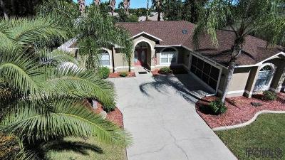 Palm Coast Single Family Home For Sale: 90 Burning Bush Dr