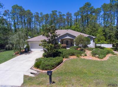 Palm Coast FL Single Family Home For Sale: $289,000