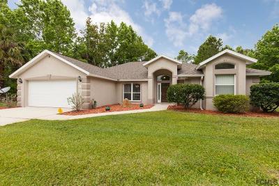 Palm Coast Single Family Home For Sale: 65 Pitt Lane