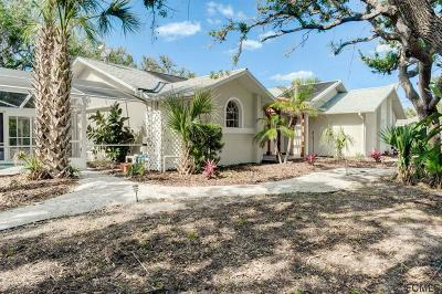 Flagler Beach Single Family Home For Sale: 2290 S Daytona Ave