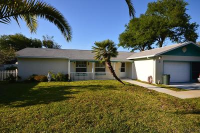 Palm Coast Single Family Home For Sale: 3 Felter Lane