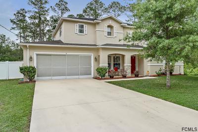 Palm Coast Single Family Home For Sale: 11 Ryall Lane