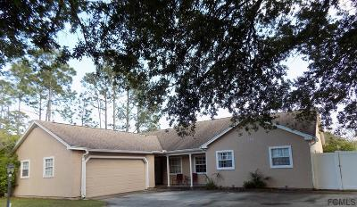 Palm Coast Single Family Home For Sale: 325 Parkview Drive