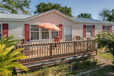 St Augustine Single Family Home For Sale: 260 Desoto Road
