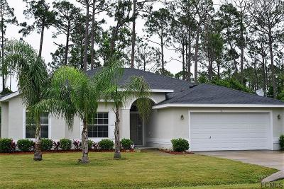Palm Coast Single Family Home For Sale: 11 Wayland Place