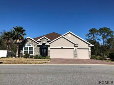 Palm Coast Single Family Home For Sale: 17 Auberry Dr