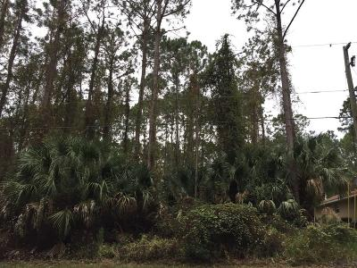 Pine Grove Residential Lots & Land For Sale: 24 Pinell Lane