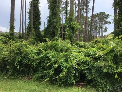 Cypress Knoll Residential Lots & Land For Sale: 23 Empress Lane