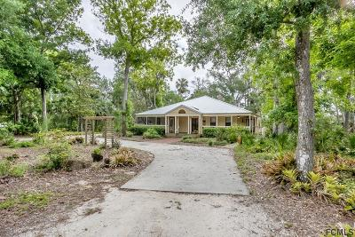 Flagler Beach Single Family Home For Sale: 25 Bulow Woods Circle